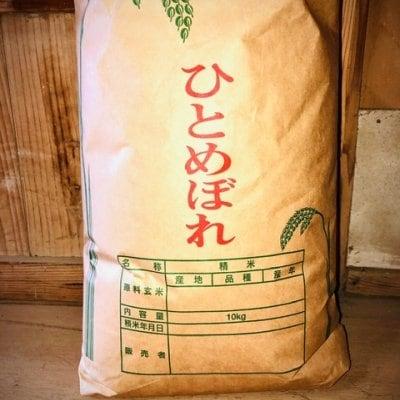 【白米10Kg】農家直送一等米 宮城県産R2年新米ひとめぼれ