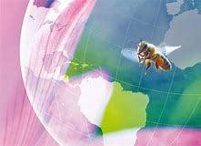 〈店頭払い専用〉2/20『みつばちと地球とわたし』〜ひとつぶの命に秘められた 大きな環のおはなし〜 上映会+みつばちをめぐる小さなお話会+シェア会 のイメージその1