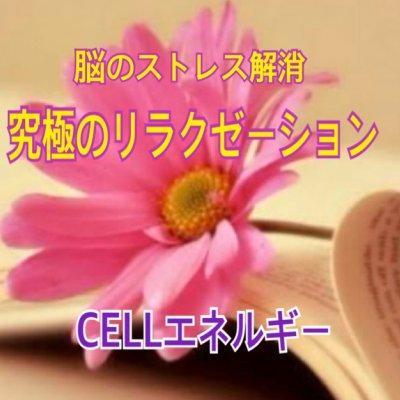 CELL*セルエネルギー(究極のリラックス、脳のストレス解消)を体感したい方*どなたでも受けられます ZOOM