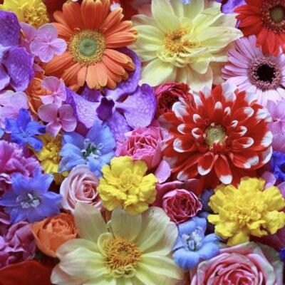 5月26日華道家瀬尾理祥  あなたの日常にさりげなく小さなお花のあるくらしプチ生け花講座