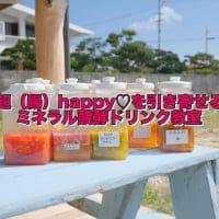2月7日開催☆超(腸)HAPPYを引き寄せるミネラル発酵ドリンク教室in糸満