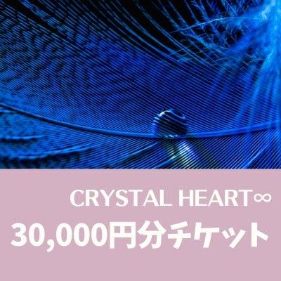 30,000円分|ウェブチケット