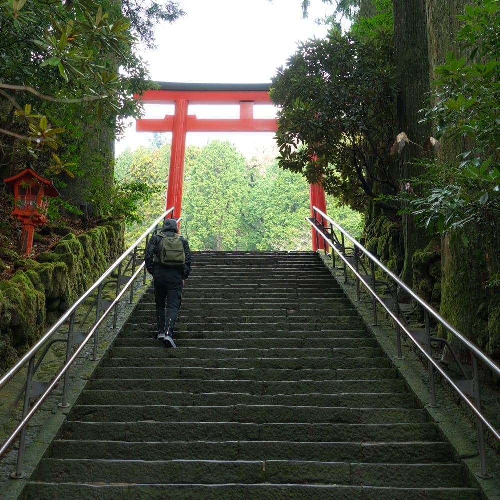 ■ZOOM版■2020/8/28 下期ハーフイヤーリーディング in 箱根のイメージその1