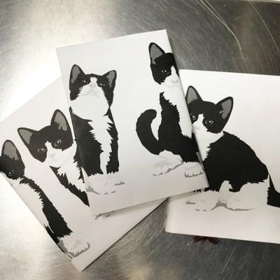本棚に子猫ちゃん/子猫のブックカバー/6枚セット