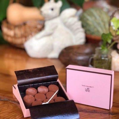 Soy pure chocolate (ありが豆腐生チョコ)