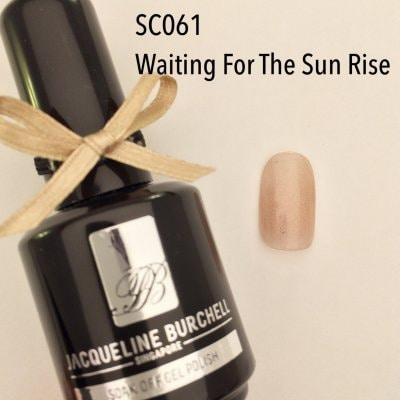 【セルフネイルに簡単!】カラージェル SC061 Waiting For Sun Rise