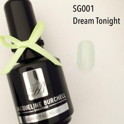 【セルフネイルに簡単!】カラージェル SG001 Dream Tonight