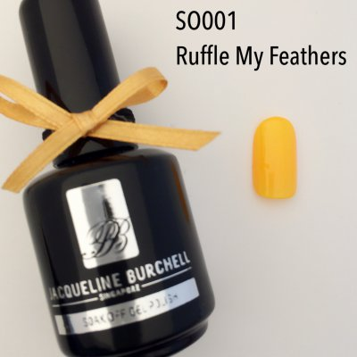 【セルフネイルに簡単!】カラージェル SO001 Ruffle My Feathers