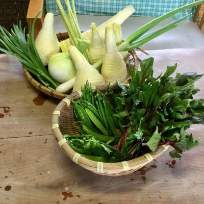 糸島無農薬野菜購入チケット
