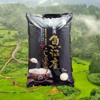 【残留農薬検出せず】精米 5kg(成人の方約1人分/1ヶ月)