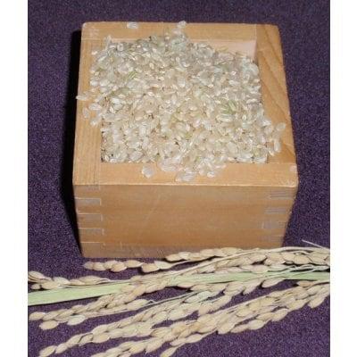 魚沼産コシヒカリ・棚田米(玄米)2キロ