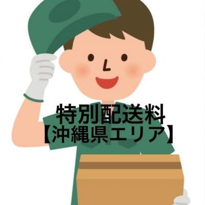 特別追加送料(沖縄離島地区)チケット