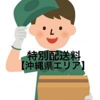 特別追加送料(沖縄地区)チケット