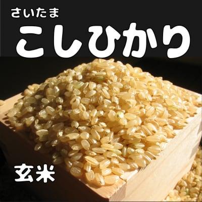 送料無料!!  玄米25kg コシヒカリ