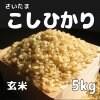 送料無料!!  玄米5kg コシヒカリ