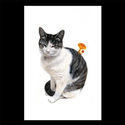 ポストカード【タマの末(すえ)】2枚セット