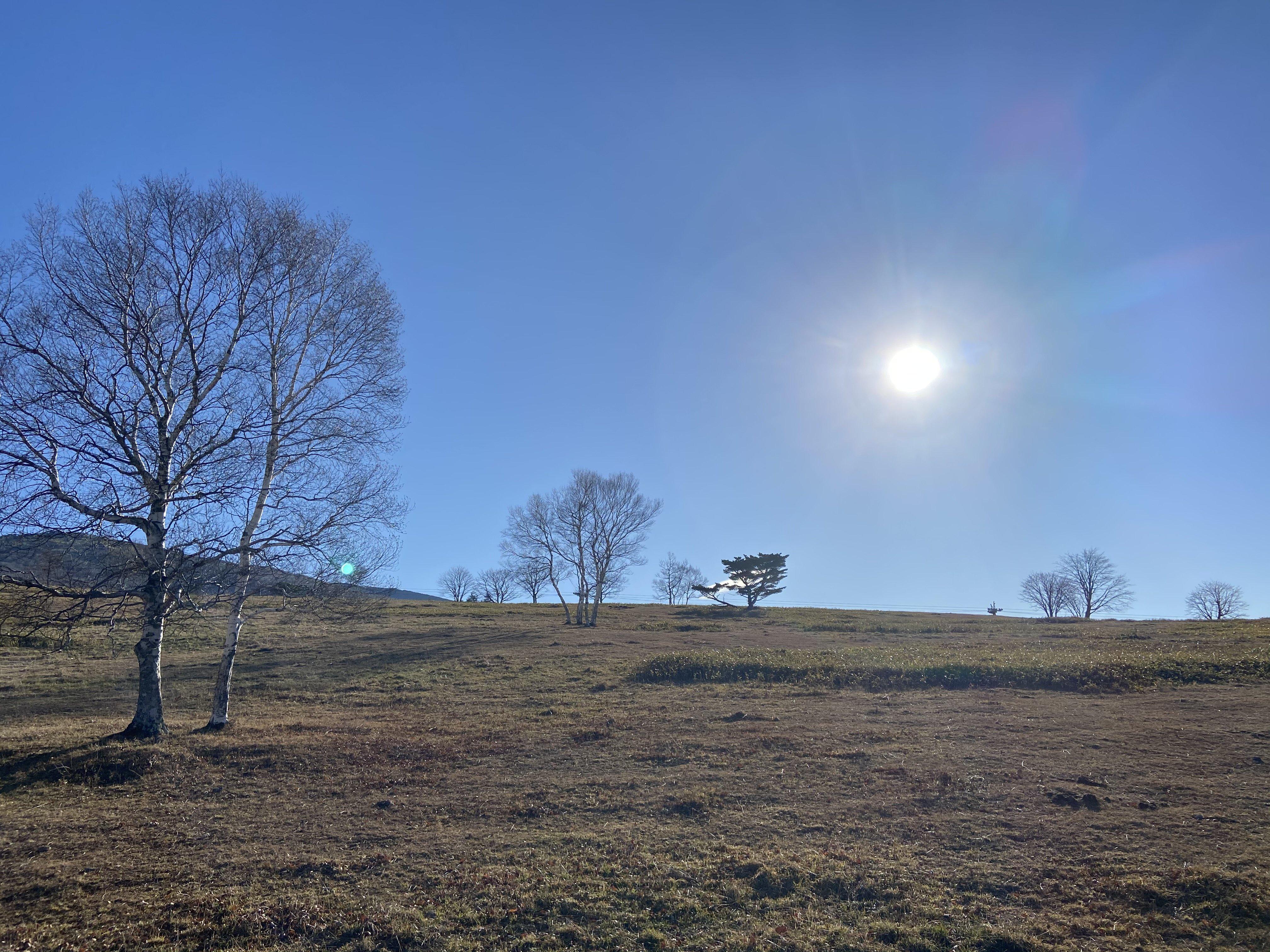 「サレンダー・瞑想キャンプ 第3回」11月11日(木)〜14日(日)3泊4日のイメージその1