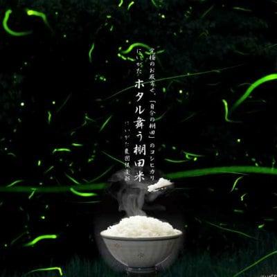 新米できました!新潟県産コシヒカリ精米5キロ~ホタル舞う棚田米~