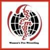 Women's pro wrestling Assemble 2020年10月1日(木)上野恩賜公園野外ステージ 大会チケットREDエリア