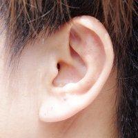 透明耳つぼコース