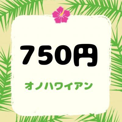 750円【店頭払い専用】シーザーサラダ、カキ氷等