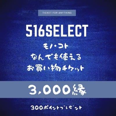 516select☆モノ・コトお買い物チケット3,000縁(モノは現地受け取りのみ)