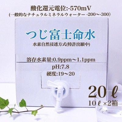 【講演会ご参加者様価格】つじ富士命水/水素水10L×2箱