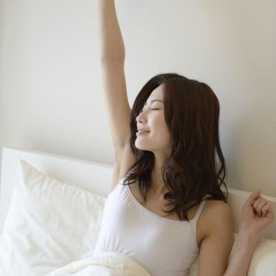 【30日返品保障付き】快適睡眠 FOUR SEASONS EXⅡ(シングル)