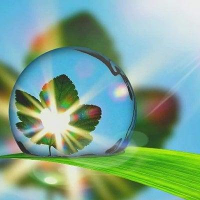 エネルギーマスター♥生命の樹♥葛飾区(モニター価格)90分