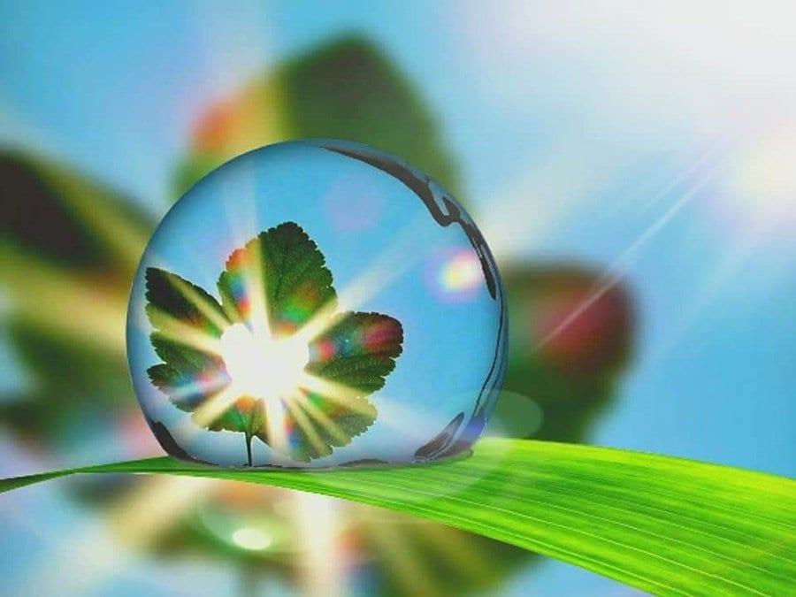 エネルギーマスター♥生命の樹♥葛飾区(モニター価格)90分のイメージその1