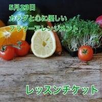 5月23日フラワーアレンジメントレッスン 春日部 レッスンチケット【店頭払いのみ】