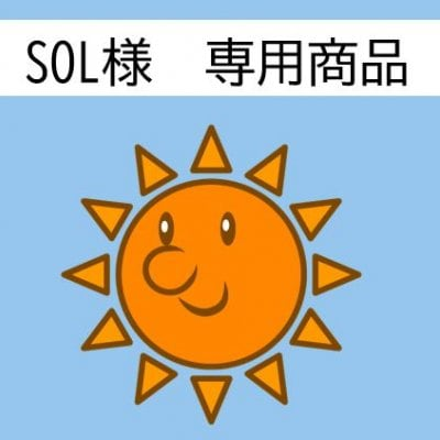 SOL様専用 腸内環境改善セット