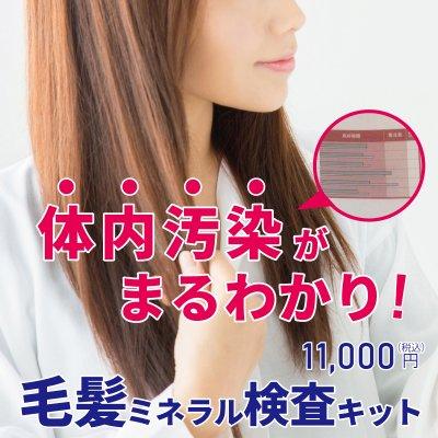 1000PT付き!体内汚染まるわかり!『26種類』毛髪ミネラル検査キット(20セットのみ)