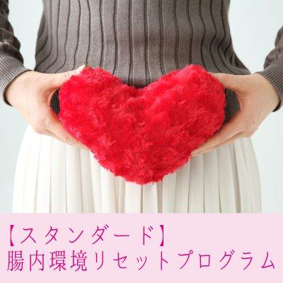 【スタンダード】腸内環境リセットプログラム