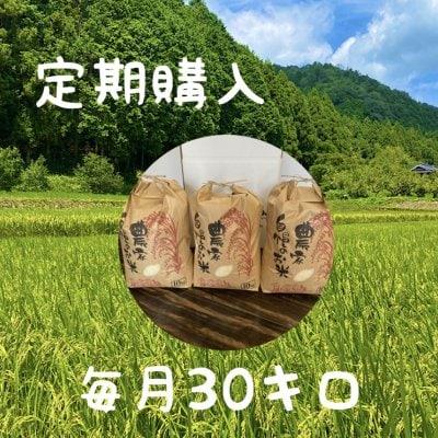 【定期購入】兵庫県産(コシヒカリ)こだわりの米(30㎏)!整骨院の先生...