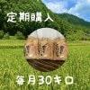 【定期購入】兵庫県産(コシヒカリ)こだわりの米(30㎏)!整骨院の先生が水にこだわり抜いて作ったお米!
