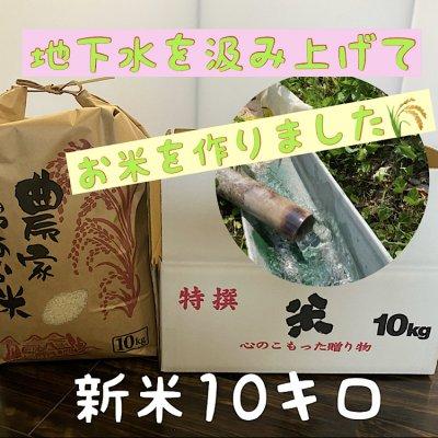 兵庫県産【コシヒカリ】こだわりの米(10㎏)整骨院の先生が水にこだわり...