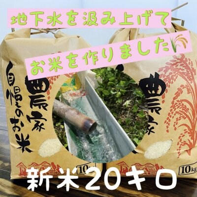 兵庫県産【コシヒカリ】こだわりの米(20㎏)整骨院の先生が水にこだわり...