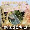 兵庫県産【新米コシヒカリ】こだわりの米(20㎏)整骨院の先生が水にこだわり抜いて作ったお米! 10㎏×2袋