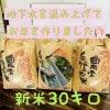 兵庫県産【新米コシヒカリ】こだわりの米(30㎏)整骨院の先生が水にこだわり抜いて作ったお米! 10㎏×3袋