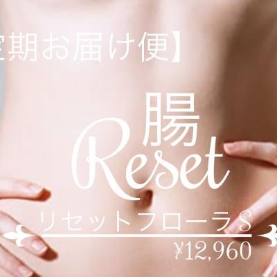 【定期お届け便】腸リセットカウンセリング  S