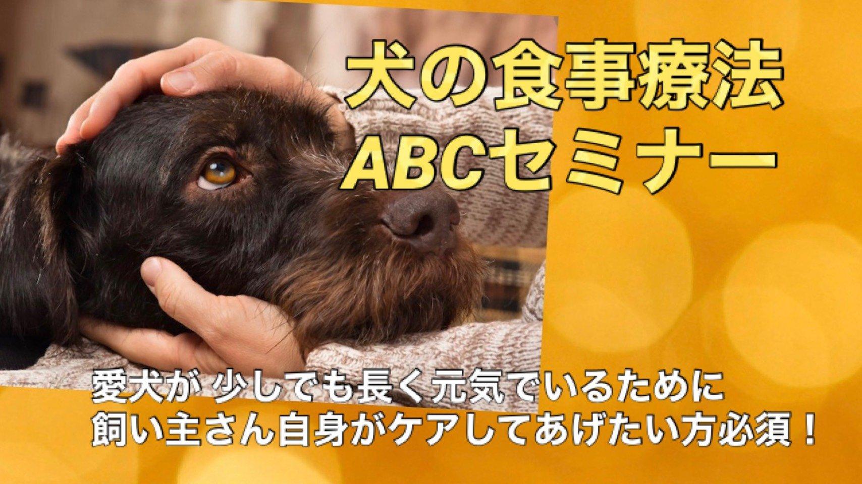 【店頭払いのみ】犬の食事療法ABCセミナーのイメージその1