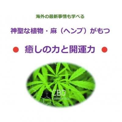 神聖な植物「大麻草」がもつ癒しの力と開運力を学ぶzoomセミナー