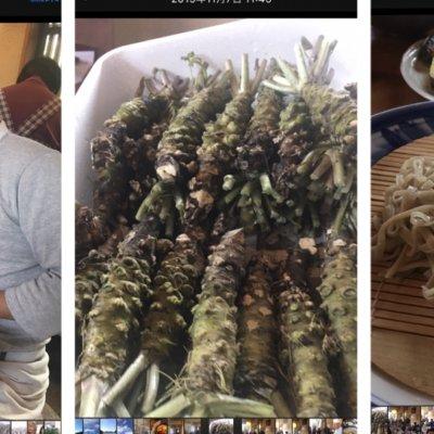 【わさび講座と美味しい蕎麦を食す会in蒲郡。本わさびのお土産付】