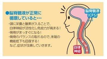 店頭払いのみ【脳 脊髄液 活性法 体験会】