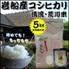 【お米5㎏コシヒカリ】清流・荒川米&TVで話題!天然塩付き  送料無料(一部除外)平成29年度産新米