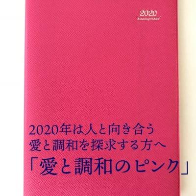 【SQ教育の実践に最適!】アイアイ手帳 Amazing DIARY 2020(ピンク )