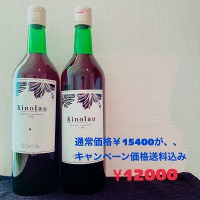 キャンペーン☆キノラウ×2本