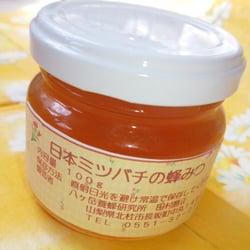 【八ヶ岳産 100%純粋】日本ミツバチのハチミツ (100g お試しサイズ)
