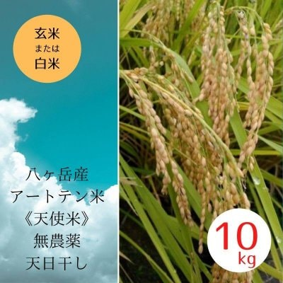 《高波動&ソマチッド入り》 八ヶ岳産 無農薬&天日干し 天使米 10...
